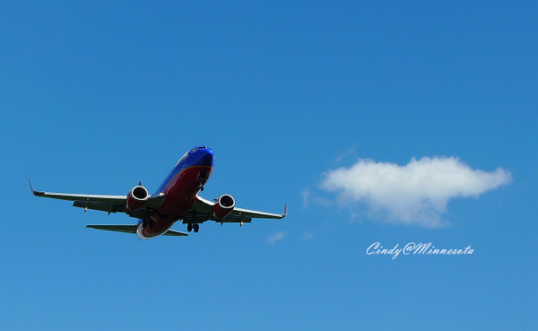 plane-02.jpg