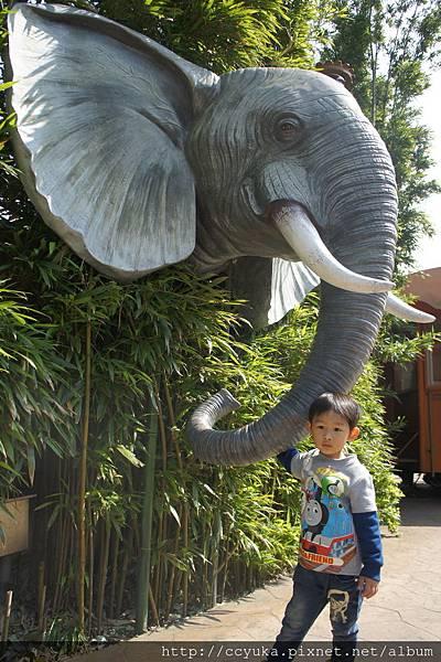 園區內,逼真的大象