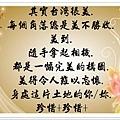 陳震語錄59