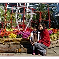 植物園7.jpg
