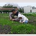 開心農場8.jpg