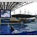 花蓮行day2_海洋公園9