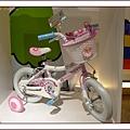 我的腳踏車6