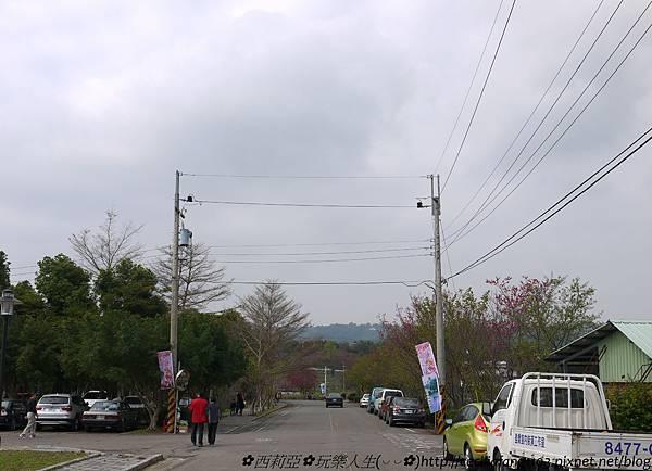 P1120703.jpg