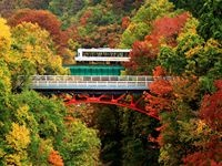 mainvisual_autumn_photo03_副本.jpg
