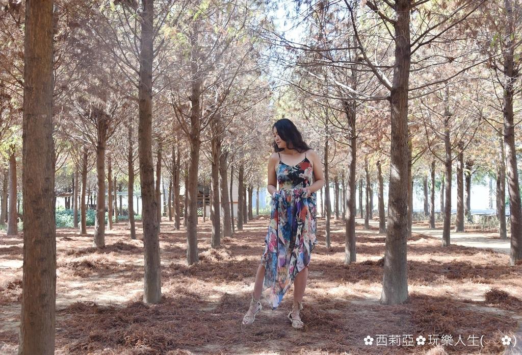 BeautyPlus_20181130000209070_save_结果.jpg