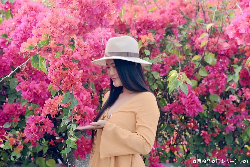 BeautyPlus_20190314194723627_save_结果.jpg