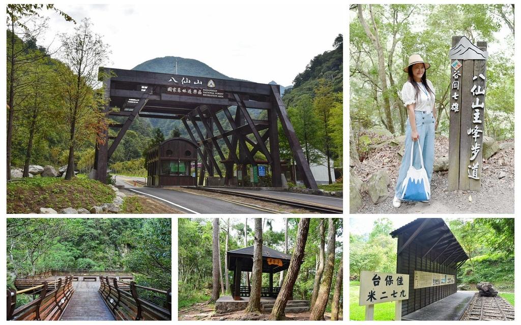 台中和平區|八仙山國家森林遊樂區 天籟、竹林步道 佳保台車站 安心旅遊 森林巴士天天出發