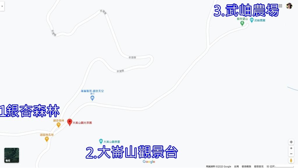 銀杏森林.jpg