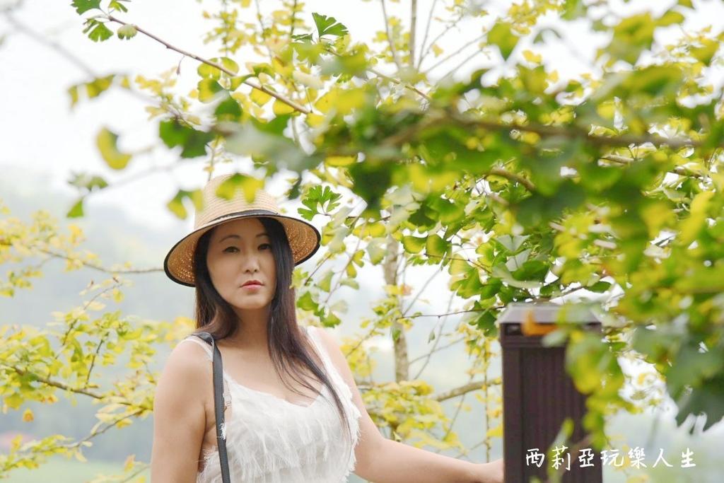 BeautyPlus_20200921153611112_save_结果.jpg
