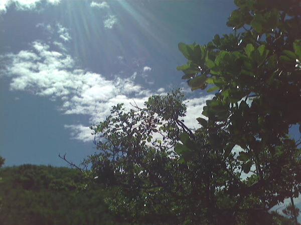 有陽光真好.. 人都變得有精神了^^