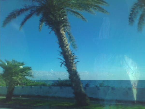 路上的海景也讓我手癢想拍