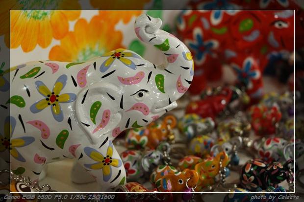 elephant006