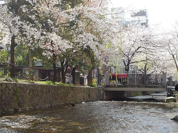 京都三条(二).jpg