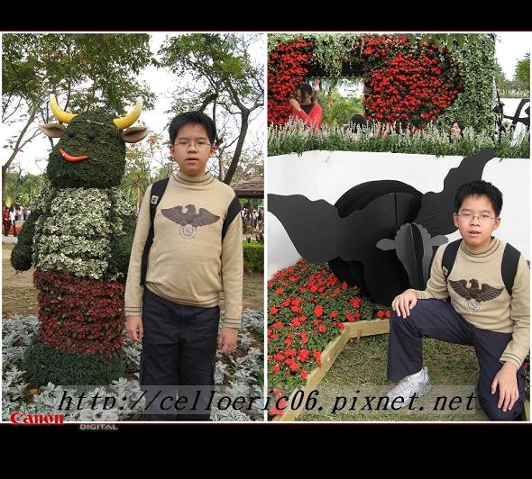 2009台北花卉節