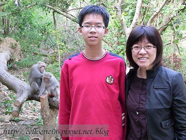 柴山看猴子