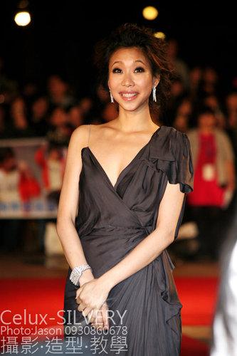 2009金馬獎最吸睛男女藝人-與會嘉賓-胡婷婷-吳富勇攝.jpg