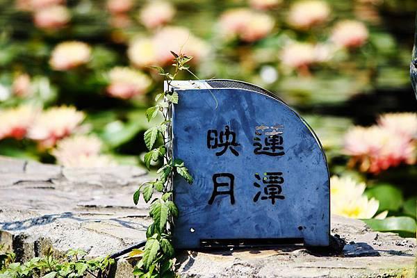 IMG_7579_副本.jpg