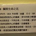 nEO_IMG_IMG_3526.jpg
