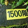 P1070805.JPG