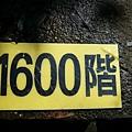 P1070806.JPG
