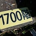 P1070808.JPG