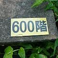 P1070876.JPG