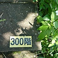P1070879.JPG