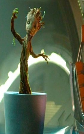 guardians-of-the-galaxy-groot and rocket (17).jpg