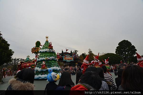 768DSC_5390.jpg