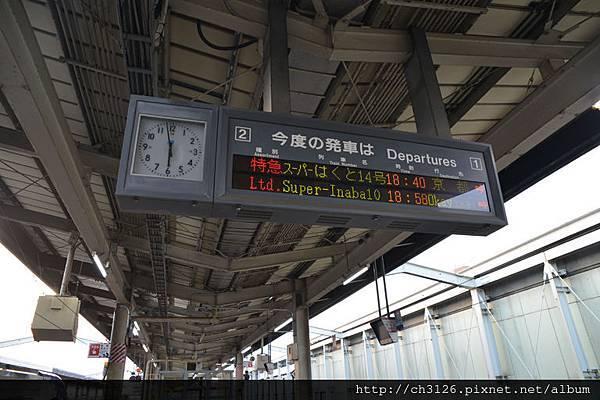 768DSC_7314.jpg