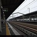 768DSC_2257.jpg
