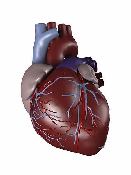 Heart iStock pic (1)