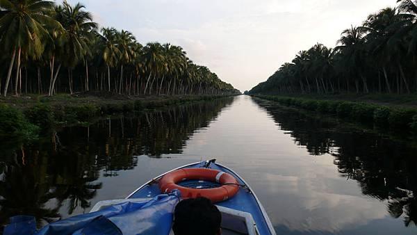 遊公司的椰林,搭的是這種貼水面很近的迷你小艇,講話大聲一點都會晃個不停....,一直擔心河理的鱷魚會在我這邊晃低時撲上來咬我,............XDDD)