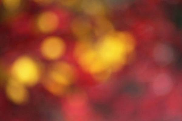 warm_autumn_bokeh_by_DyingBeautyStock