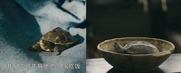 陸劇-軍師聯盟-50-心猿意馬.jpg