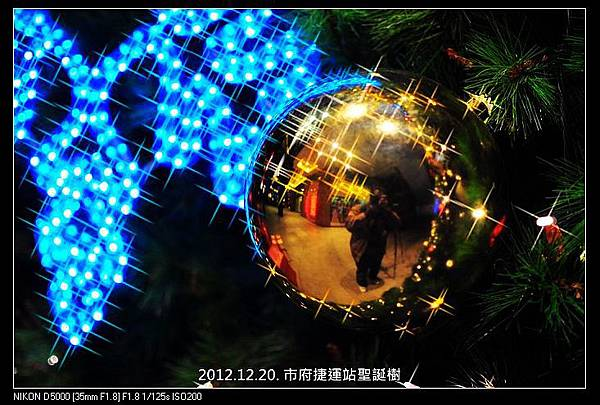 nEO_IMG_121220--Xmas Tree D5000 015-800
