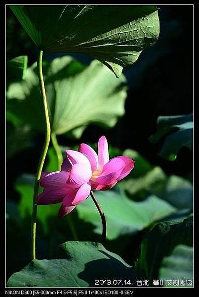 nEO_IMG_130714--HuaShan Art Center 004-800.jpg