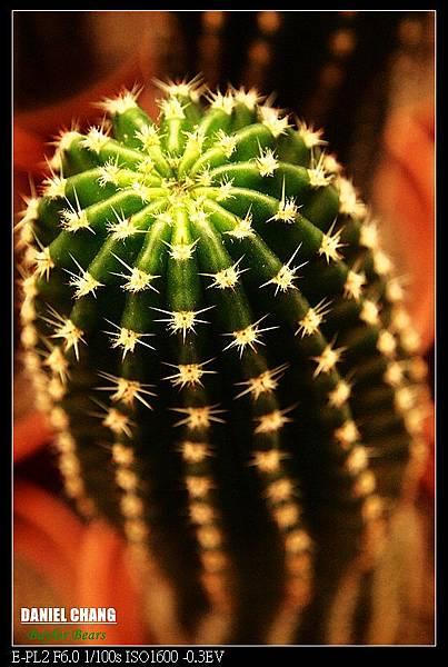 nEO_IMG_130810--Shilin Garden 073-800.jpg