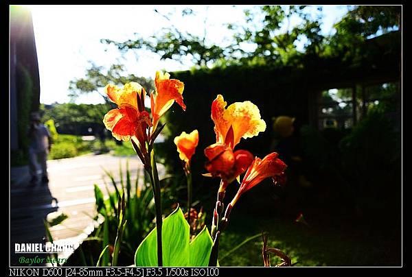 nEO_IMG_130811--Pavilion Dream D600 046-800.jpg