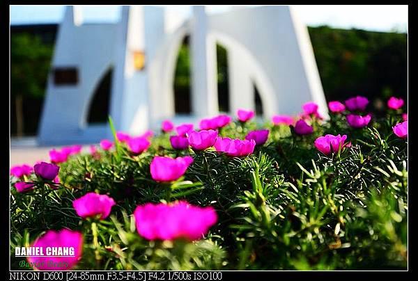 nEO_IMG_130811--Pavilion Dream D600 063-800.jpg