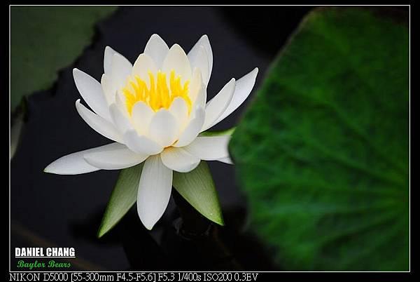 nEO_IMG_131102--Garden ShuangXi 071-800.jpg