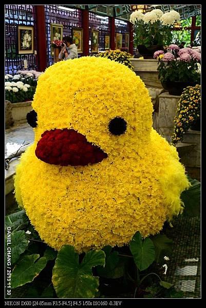 nEO_IMG_131130--Shilin Garden Festival 112-800.jpg