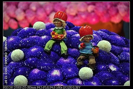 nEO_IMG_131207--Flora Art Work D5000 085-800.jpg