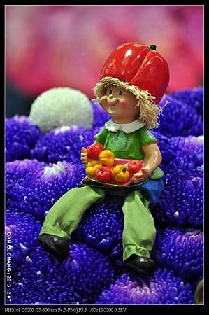 nEO_IMG_131207--Flora Art Work D5000 089-800.jpg