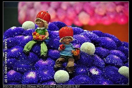 nEO_IMG_131207--Flora Art Work D5000 091-800.jpg