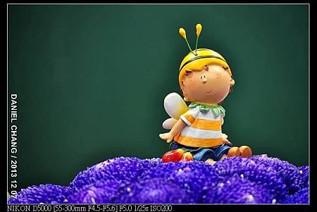 nEO_IMG_131207--Flora Art Work D5000 128-800.jpg