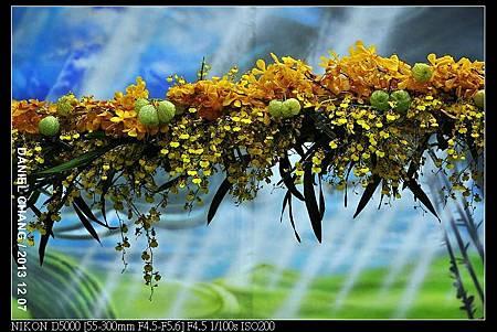 nEO_IMG_131207--Flora Art Work D5000 160-800.jpg