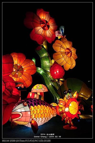 nEO_IMG_140216--Lantern Festival D5000 065-800.jpg