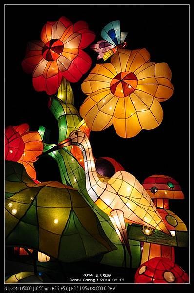 nEO_IMG_140216--Lantern Festival D5000 070-800.jpg